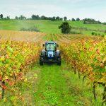 Prestiti aziende agricole
